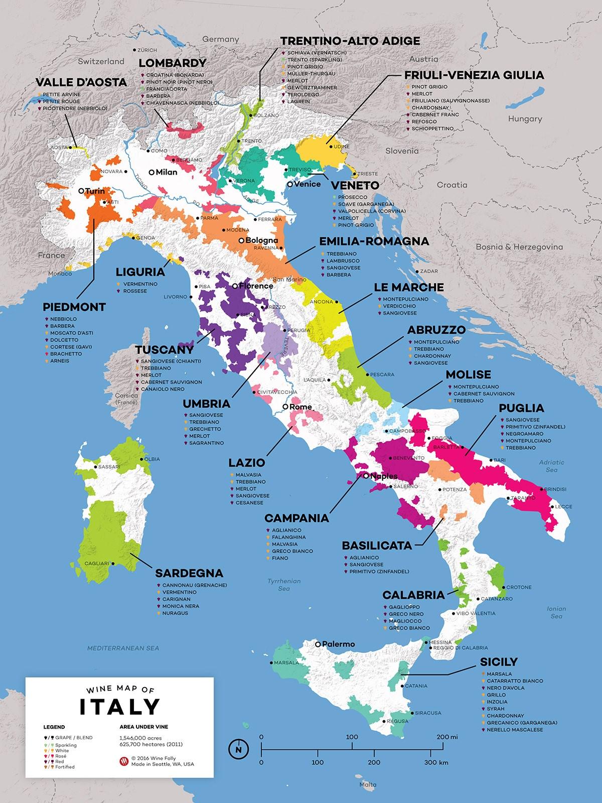Regione per regione la mappa dei vini italiani